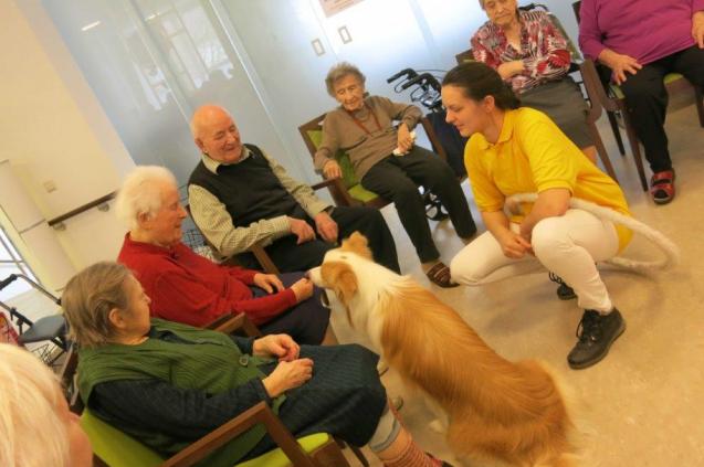 Therapietiere im Pflegezentrum Yspertal